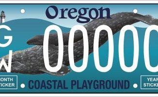 "Matrícula ""ballena gris"" (coastal playground)"